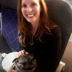 What to Know if You Fly with Your Pet (From a Flight Attendant's Point of View)